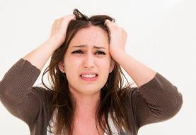 تغذیه مناسب برای کنکوریها: ویتامینی برای کاهش اضطراب