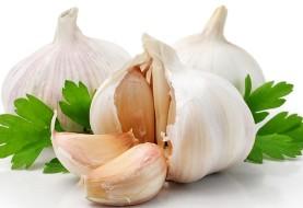 ۶ خوراکی برای تضمین سلامت روده