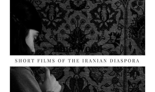 Iran Hyphenated: Short Films of the Iranian Diaspora, Curated by Sara Zia Ebrahimi and Lila Yomtoob