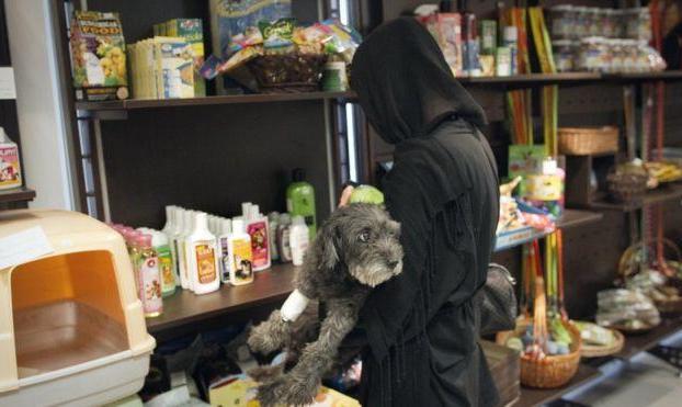 پلیس امنیت چند مغازه «پت شاپ» غذا و محصولات حیوانات خانگی را در تهران پلمب کرد