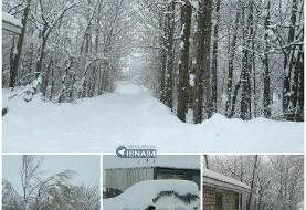 ارتفاع برف در تاراز خوزستان به یک متر رسید+عکس! قطع برق ۳۰ روستا در شهرستان کوهرنگ با ۱۷۰ سانتیمتر برف