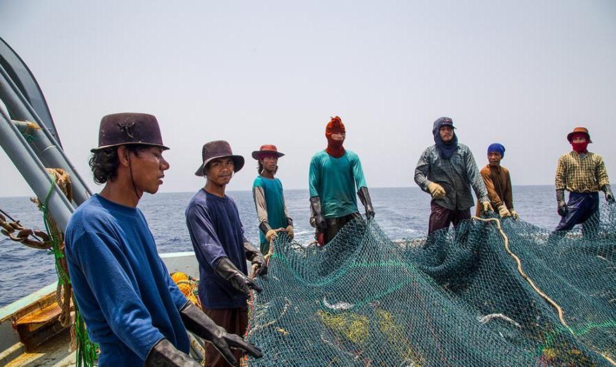 حمله شبانه به ذخایر خلیج فارس: کشتیهای چینی همچنان هست و نیست منابع ماهی دریا را جارو می کنند
