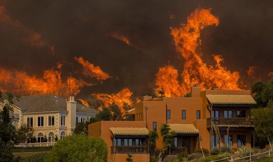 شمار مفقود شدگان آتشسوزیهای کالیفرنیا به ۶۰۰ کشته رسید: از مزارع شمال تا کاخ نشینهای جنوب