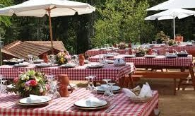 Singles, Couples and Family Cook-out Picnic Event