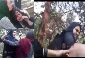 دفاع صادق لاریجانی از کتک زدن دختر مخالف حجاب اجباری توسط مامور گشت ارشاد
