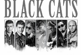 Black Cats in Chicago, Thanksgiving Concert with DJ Armin, DJ Sultan