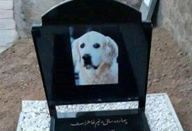 عملیات سپاه سلمان رشت برای شناسایی و دستگیری زنی که سگش را به عنوان فرزندش کفن پوشاند و در مسجد زادگاه پدری اش دفن کرد