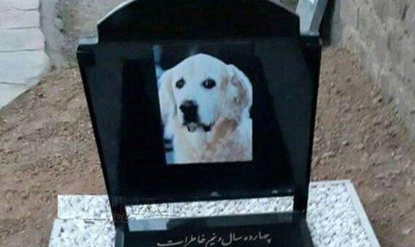 Revolutionary Armed Forces Exhume Dog Buried in Mosque Cemetery, ...