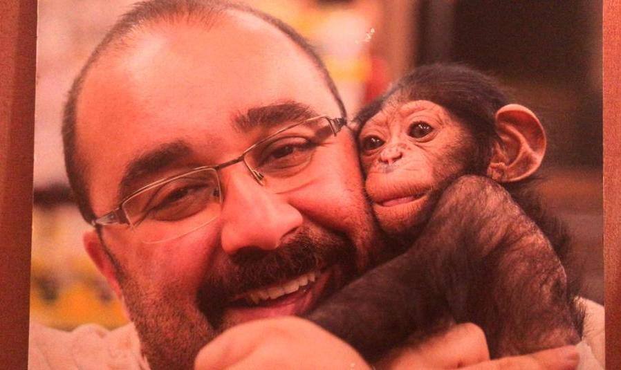 ماجرای انتقال شامپانزه ۳ ساله به خارج از کشور خبر ساز شد
