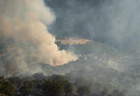 جنگلهای رامسر همچنان میسوزد: وقوع ۳۰ فقره آتش سوزی در جنگلهای مازندران