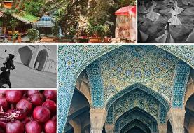 Iran Through the Lens, A Photography Exhibit