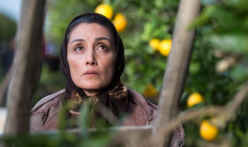 Orange Days Feat. Hadieh Tehrani, SPECIAL PROMOTION, Toronto International Film Festival 2018