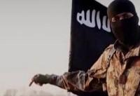 گروه تروریستی داعش مسئولیت حملات در منطقه «سینا» را برعهده گرفت