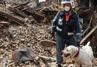 دستور رئیس جمهور ایران برای رسیدگی به زلزله زدگان