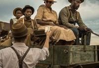 نژادپرستان مزارع دو سیاهپوست را تسخیر کردند+عکس
