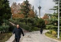 هوای تهران سالم است/ پیشبینی بارش باران در پایتخت
