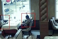 سنجاقکهای هوشمند چهره مجرمان را شناسایی می کنند!+عکس