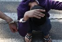 دستگیری سارقان قمه به دست در زعفرانیه/ روبرو شدن با صاحبخانه راز سرقت ها را فاش کرد