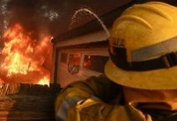 Weekly wrap-up: Elite racehorses feared dead in California wildfires as flames threaten ...