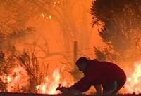 آتش کالیفرنیا صنعت کشاورزی آمریکا را تهدید میکند