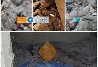 سپاه: سرکرده گروه تروریستی انصار الفرقان کشته شد (+عکس)