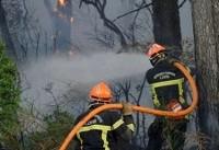 گرمایش زمین بر دل جنگل های اروپا؛ ۷۵۰ هکتار پوشش گیاهی فرانسه در چنبره آتش