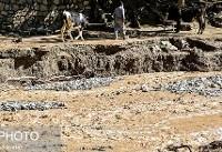 سلیمی: امدادرسانی در دو استان خراسان رضوی و گلستان ادامه دارد