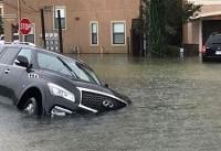 طوفان ایرما در ایالت جورجیا قربانی گرفت