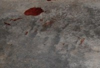 Holly Bobo Trial Reveals Crime Scene Photos