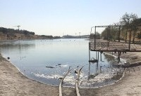 دریاچه آزادی در حال خشک شدن + عکس