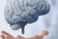 ۶ شیوه حفظ سلامت مغز را بشناسید
