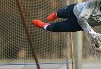 سید حسین حسینی: ثمرات تمرینات این روزهای تیم ملی را در جام جهانی میبینیم