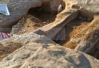 شهرداری اهواز ناظر طرح ساماندهی گور دخمهها را نپذیرفت / دیوار کشی چاره کار نیست
