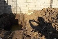 شریک جنایتکار ،جسد خانم مهندس را درباغ دفن کرده بود (+عکس)