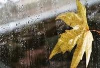 بارش پراکنده برف و باران در تهران و شمال کشور/ از شنبه همه جای کشور باران می بارد