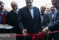 پایگاه دادههای ژنوم قومیتهای ایرانی افتتاح شد