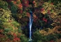آبشاری در میان رنگها (عکس)