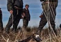 بازار پررونق شکار غیرمجاز از شمال تا جنوب کشور