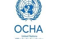سازمان ملل : ۲۶۹ فلسطینی در سرزمین های اشغالی زخمی و چهار تن دیگر شهید شدند