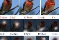 تصویر ذهنیتان رابرای این فناوری تعریف کنید تا آن را برایتان ترسیم کند! +تصاویر