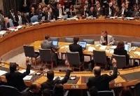 شورای امنیت درباره عملیات ترکیه در عفرین تشکیل جلسه میدهد