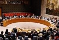 نشست اضطراری شورای امنیت درباره عفرین