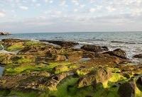 ساحل مغدان در غرب هرمزگان+عکس