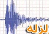 زلزله ۴.۶ ریشتری عسلویه را لرزاند