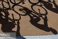 مربی تیمملی دوچرخهسواری بانوان: مشکل اصلی نداشتن پیست چوبی است