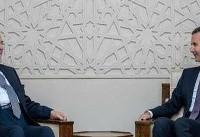 پیروزی های به دست آمده ضد تروریسم در عراق و سوریه مشترک است