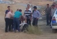 ۷ سال و نیم زندان برای راننده ای که در استان فارس با پلیس درگیر شده بود