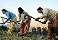 تلاش جامعه جهانی برای توانمندسازی زنان و دختران روستایی