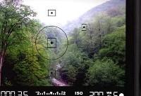 انتخاب ۲۳ عکس برای «ثبت جهانی جنگلهای هیرکانی»