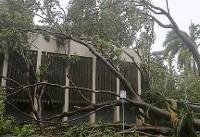 آسیب جدی به شبکه برق استرالیا در پی طوفانی شدید